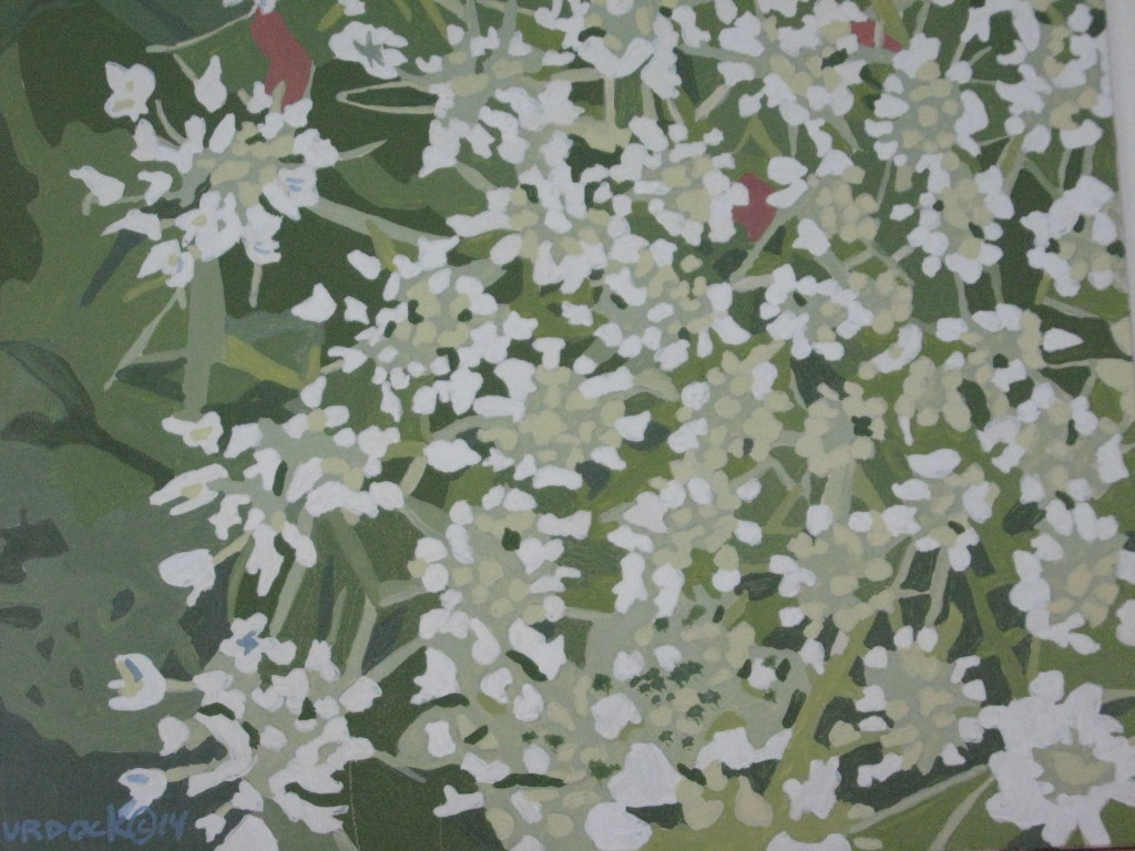 "Queen Anne's Lace  C 2014  8""x8""  Egg Tempera    $400"